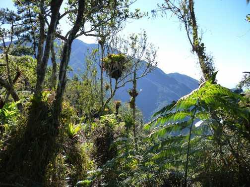 Pico Turquino trail