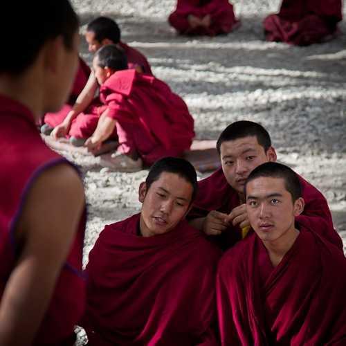 Pondering Monk, Sera Monastery, Lhasa