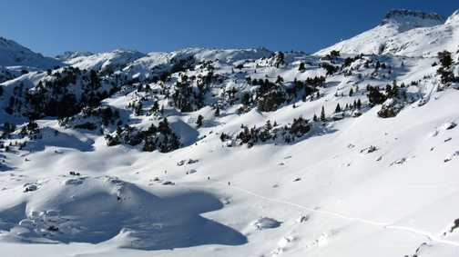 Trekking across the virgin snow