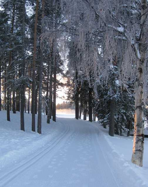 Cross Country skiing route