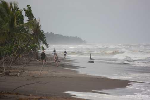 Caribbean coast at Tortuguero