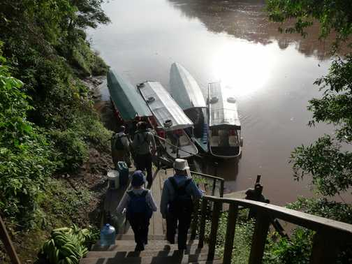Steps from Tambopata
