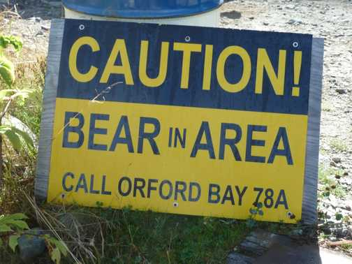 Caution Bears