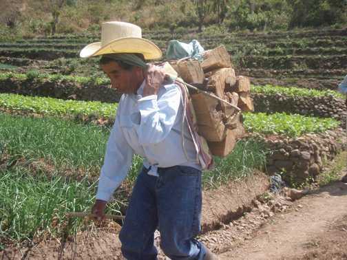 Local getting along everyday life at a Guatemalan village