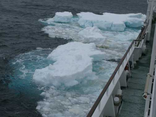 Ice flows and icebergs were successfully negotiated by the Vavilov