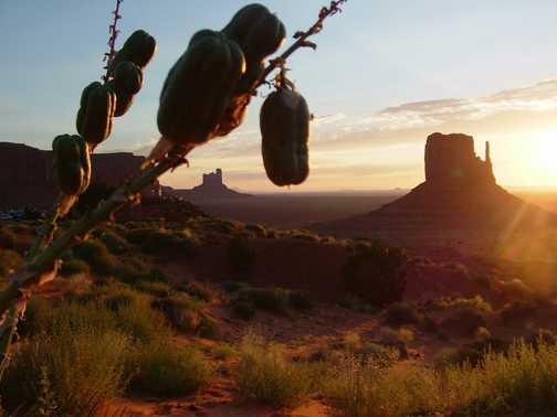 Sun rise Grand Canyon