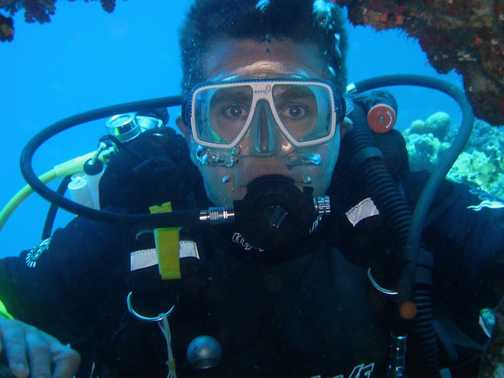 Diving in the Red Sea 2005