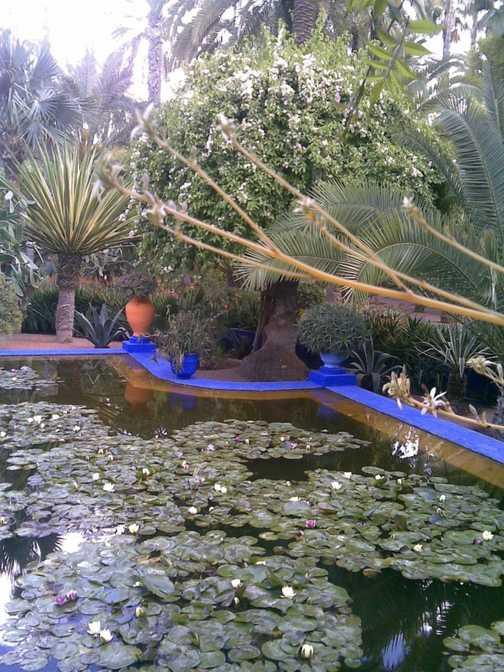 Majorelle Gardens Marrakech 2