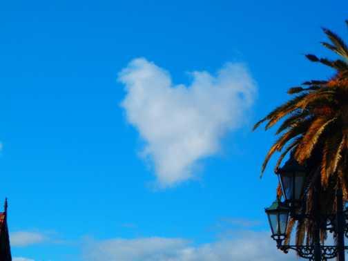 love is in the air - rotorura
