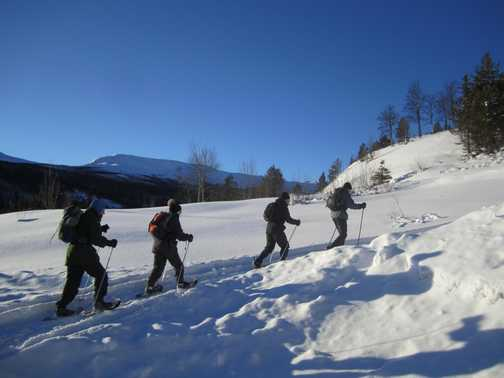 Snowshoeing on the free day