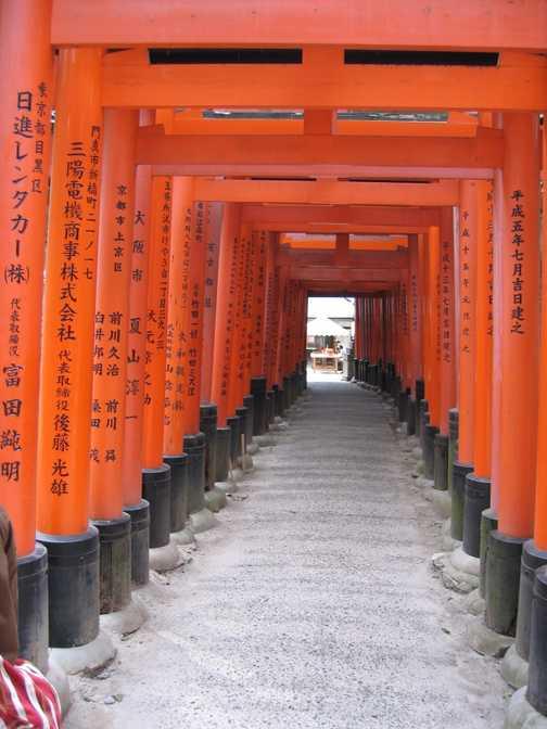 Many gates at Fushima shrine