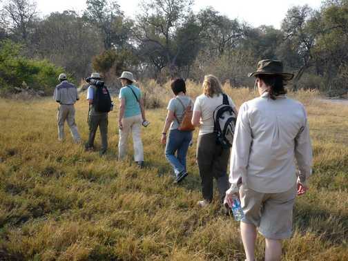 Bush walk, Moremi Reserve - Okavango Delta