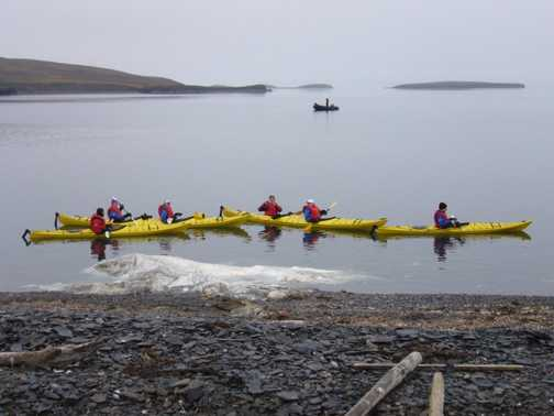 Kayakers look at a whale carcuss