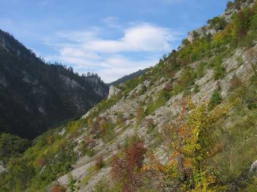 Autumn in Buinovo Gorge_3