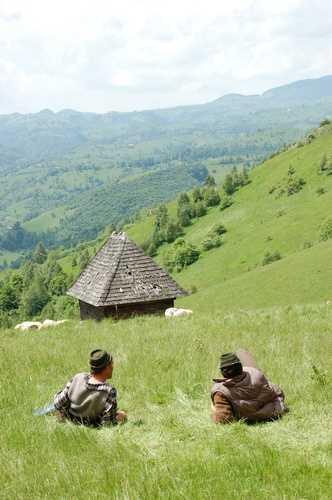 Shepherds on the hillside, Bran