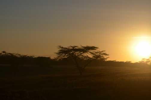 Sunrise at Lake Nakuru 2
