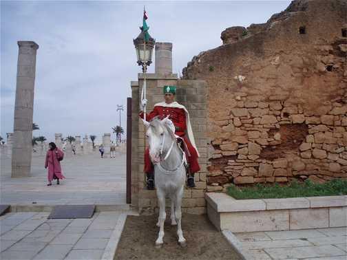 Mosque ruins + Hassan tower, Rabat