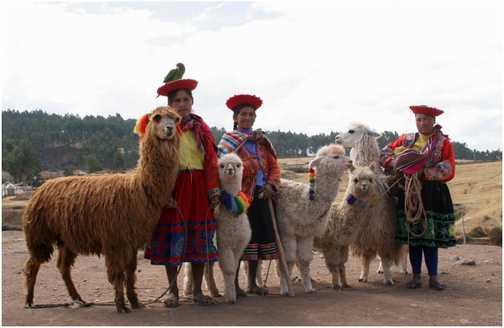 Ladies and lamas