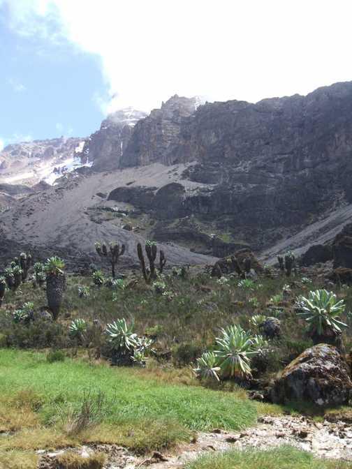 baranco valley