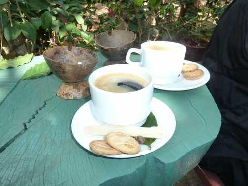 Coffee with sugar cane