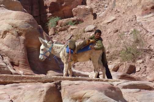 boy and his donkey at Petra