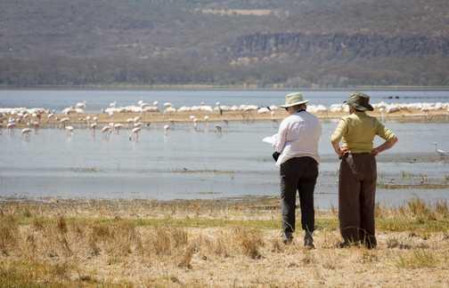 Watching the Flamingos in Lake Nakuru