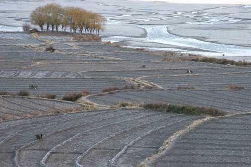 River & fields, Kagbeni.
