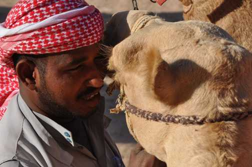Camel and keeper