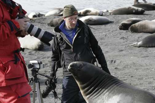 The elephant seal pups are very friendly!