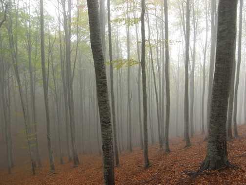 M Sumbra 23 Oct in the clouds
