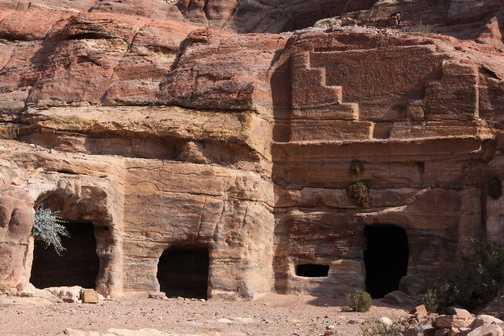 Amazon Mosaic   Petra