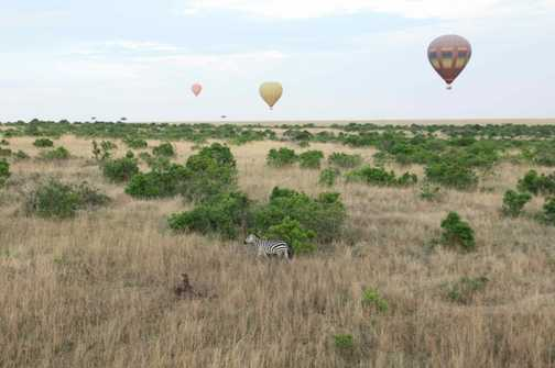 Masai Mara Air Ballooning