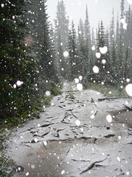 Let it snow on Bursall Pass