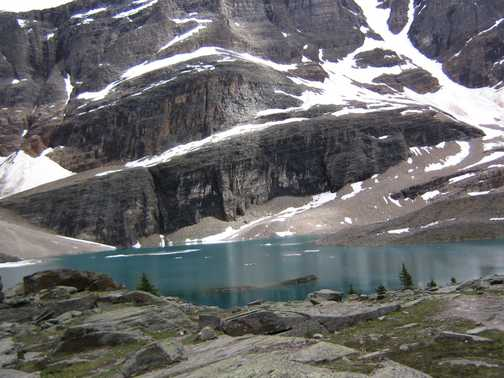 Above Lake O'Hara on the Alpine Circuit. Yoho N.P.