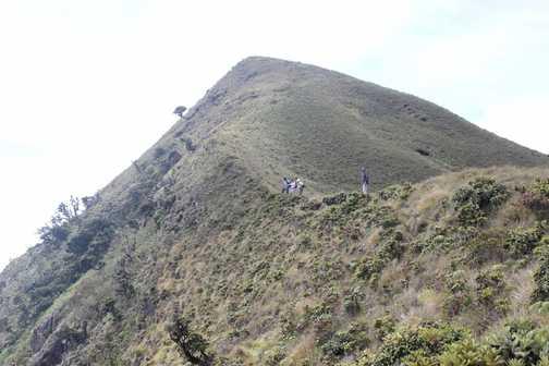 Climbing Meesapulima
