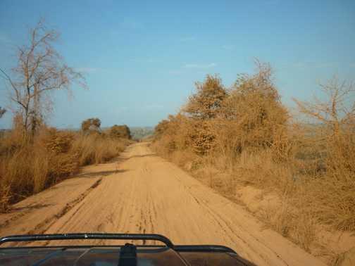 En route to Bekopaka