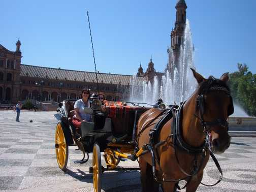 Carriage at Plaza Espania fountain