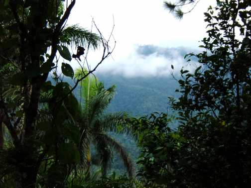 Sierra Maestra with cloud cover