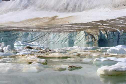 Glacial Lake, Cavell Meadows.