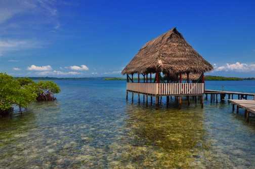 The magic world of Bocas
