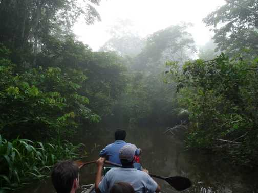 Misty Canoe Ride. On the way back to Coca