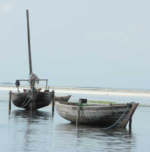 Zanzibar ..... fishing fleet