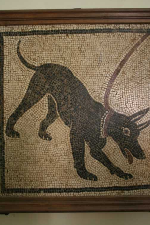 Mosaic from Pompei (in Naples museum)