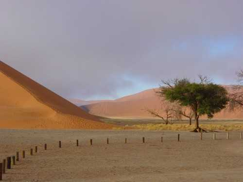 dune 45 at sossusviei