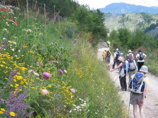 Trigrad Gorge Trail