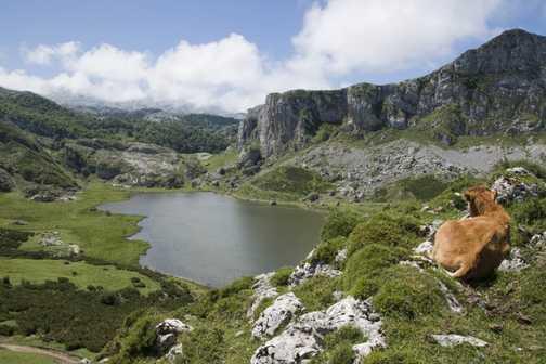 Covadonga lakes