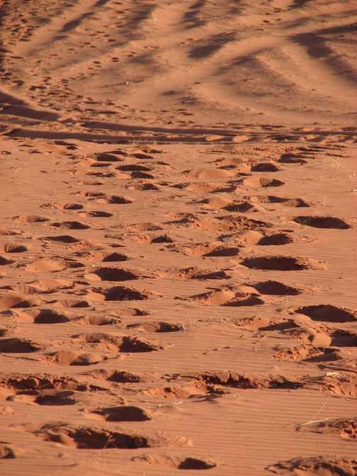 Wadi Rum long way up!