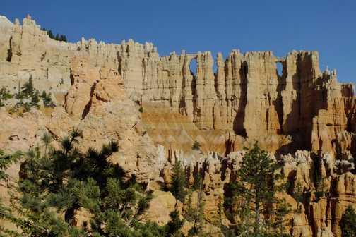 bryce-peekaboo loop