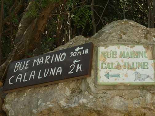 Tranquillity at Serra Orrios