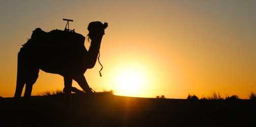 Saharan Sunrise 2